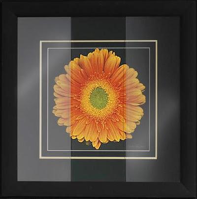 Glazing Glass Plexiglass Art Impressions Gallery Framing