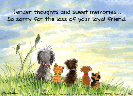 Sorry For Your Loss Pet Quotes