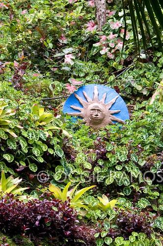 La Union - Botanical Garden Jungle Face