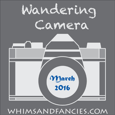 Camera And Photo Linky Party
