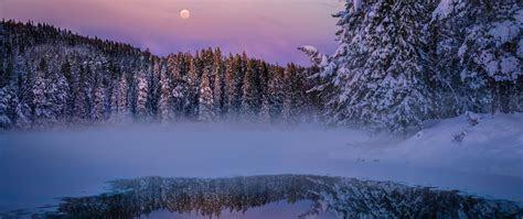 winter fog snow trees  lake full hd  wallpaper