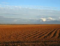 Ambienti agricoli, di M. Mendi