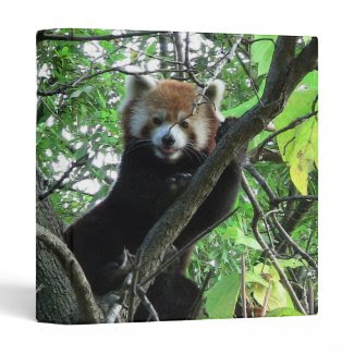 Red Panda Notebook Binder