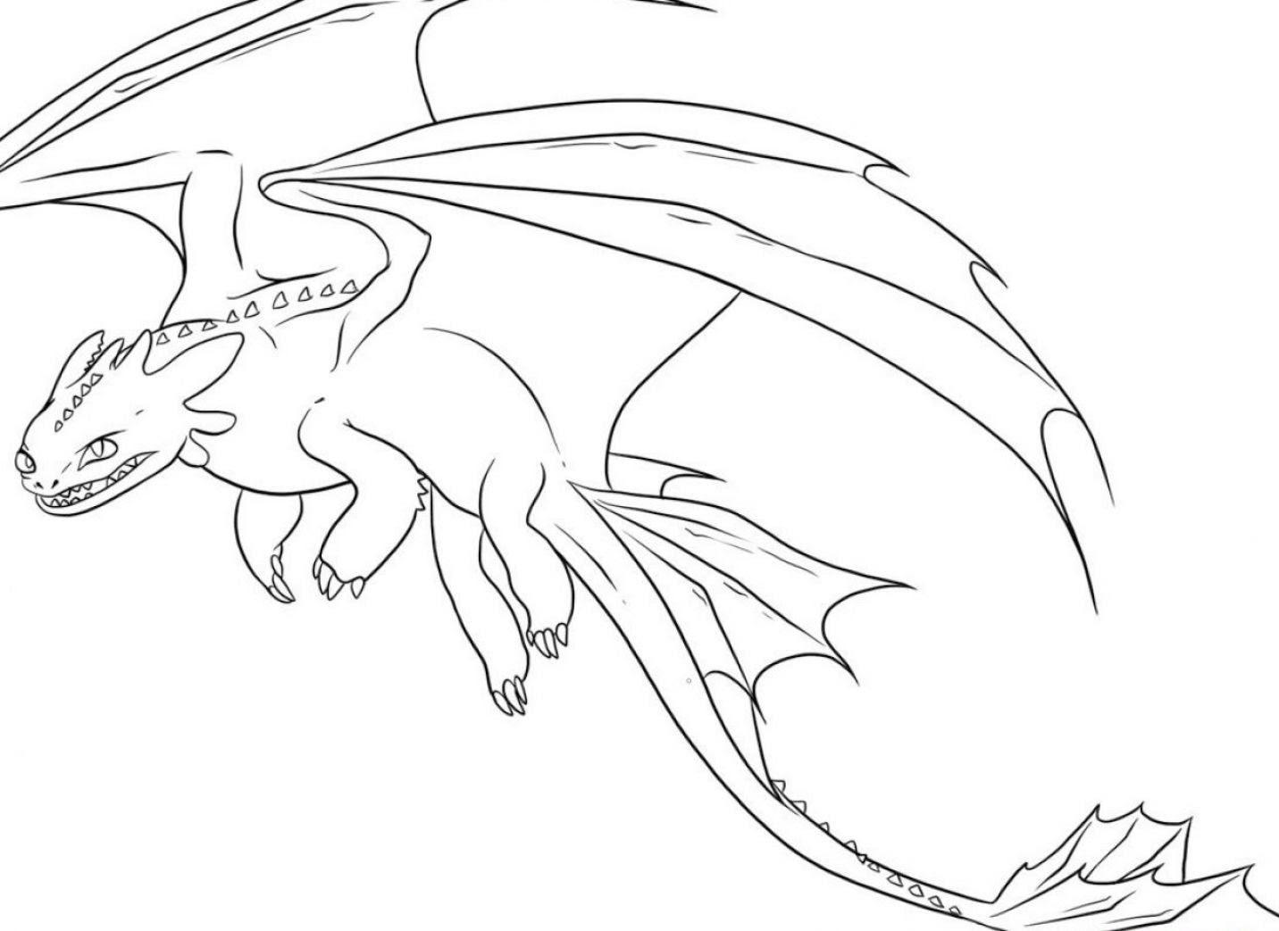 Galeria De Imagenes Dibujos De Dragones Para Colorear