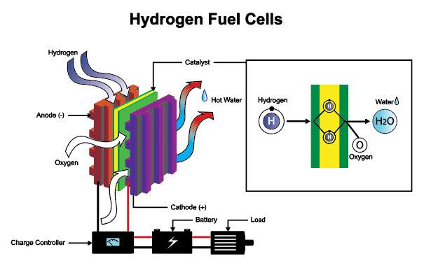 แผนภาพของเซลล์เชื้อเพลิงไฮโดรเจนในหลักสูตรออนไลน์ที่มีคุณภาพ