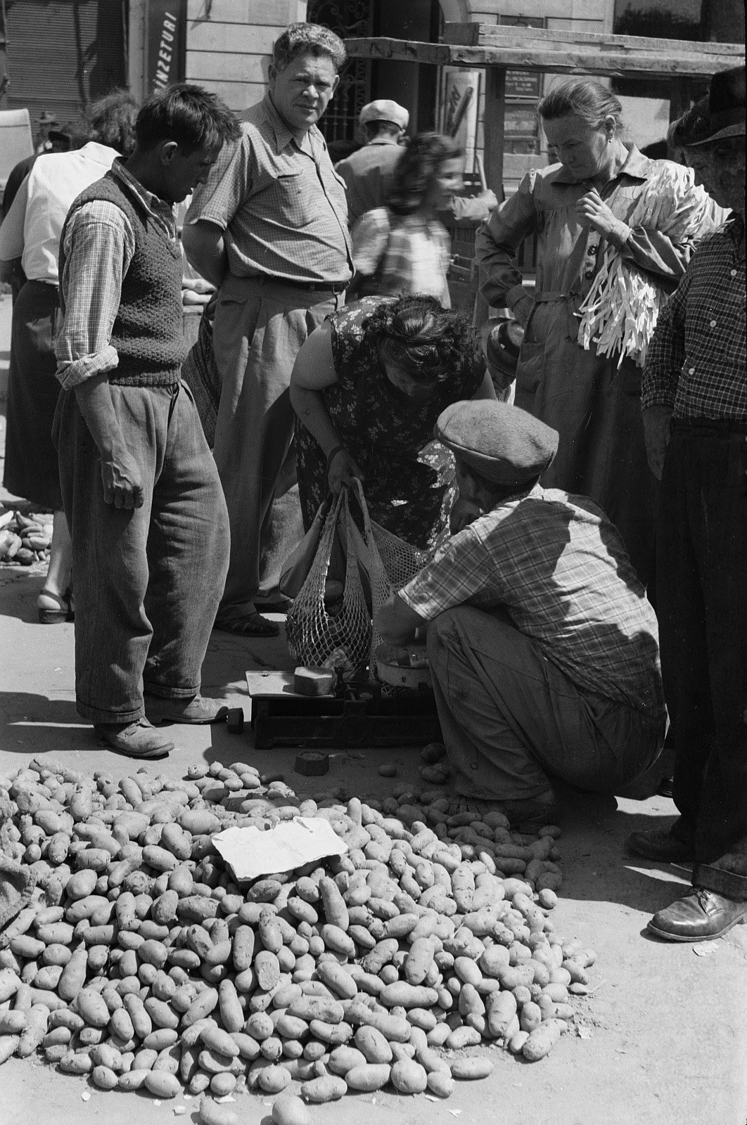 1956 cartofi