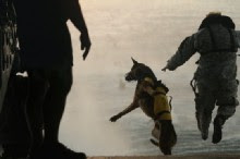 CIA Dogs Sniff Out Osama Bin Laden