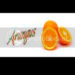 Naranjas Arangus