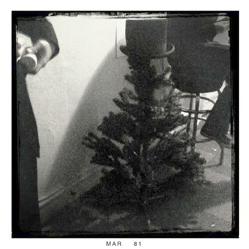 "Top-hatted ""Tekurujou"" tree"
