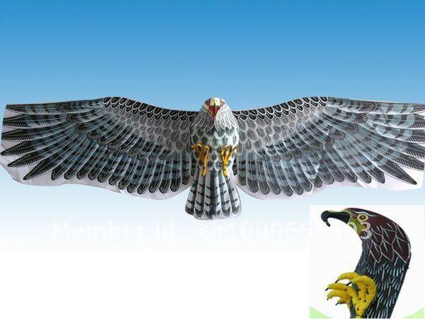 3D-59-Huge-Japanese-Eagle-Hawk ...