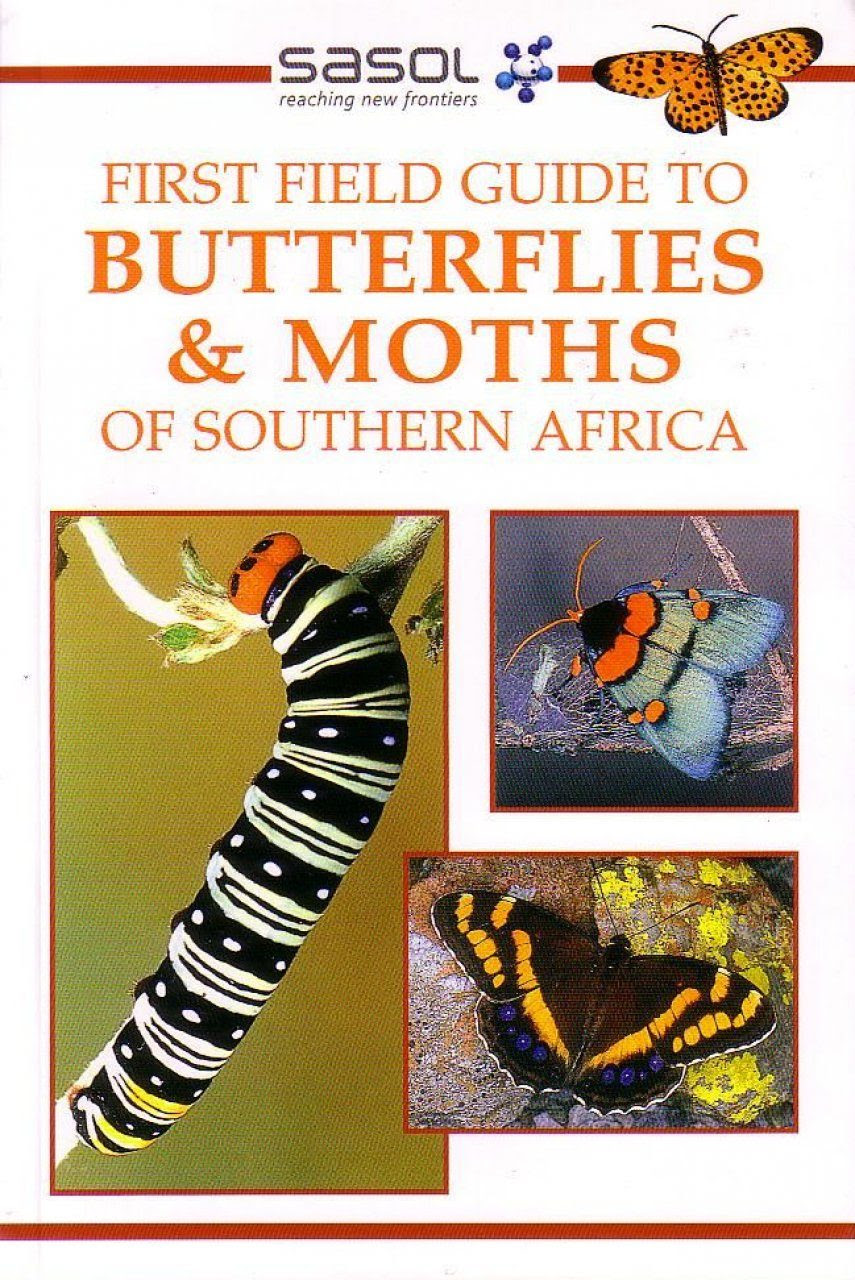 First Field Guide To Butterflies And Moths Of Southern