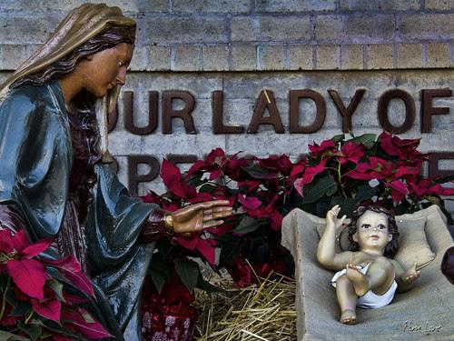 OLPH nativity scene