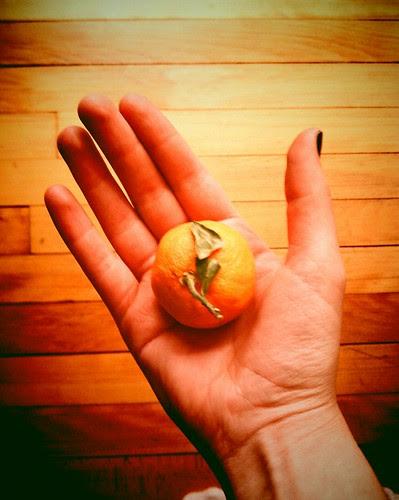 tiniest clementine!!