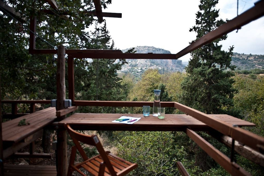 The view from the tree house.