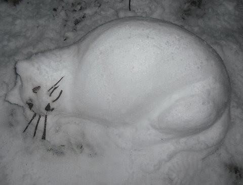 Snow Cat by Tim Dickins