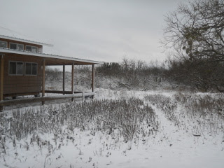 December 2015 Snow 11