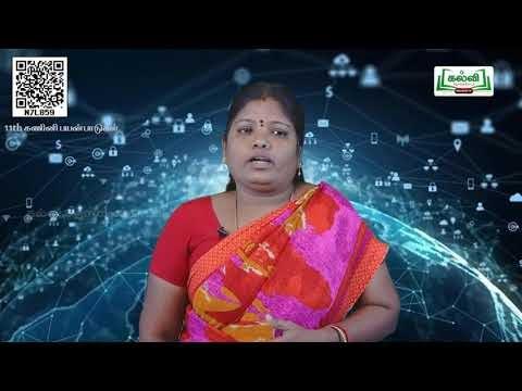 11th Computer applications ஜாவா ஸ்கிரிப்டில் உள்ள கட்டுப்பட்டு கட்டமைப்பு '  அலகு 15 பகுதி1 Kalvi TV