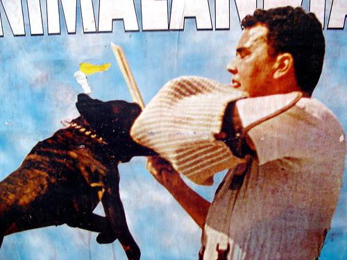 Stop! Cartel Circo Poster