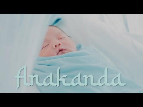 LIRIK LAGU DATO' SRI SITI NURHALIZA | ANAKANDA (OFFICIAL MUSIC VIDEO)