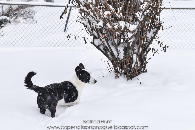 Katrina-Hunt=Snow-Sheldon-6