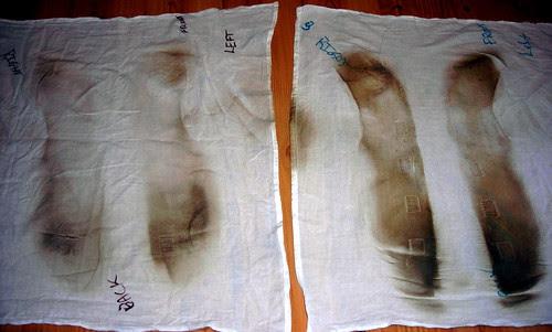 Compare White Cloths
