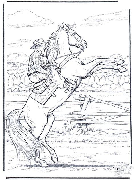 wild horse horses