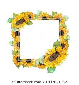 Sunflower Border Images, Stock Photos & Vectors   Shutterstock