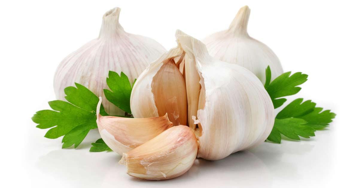 http://media.mercola.com/ImageServer/Public/2013/November/garlic-with-parsley-fb.jpg
