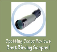 Don's Spotting Scopes Review site covers digiscoping and other birding tips (12/2010)