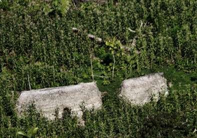 Une des habitations du peuple nouvellement découvert dans la vallée du Jivari, à l'ouest du Brésil. © Funai