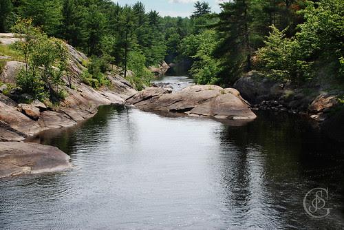 Black River Wilderness