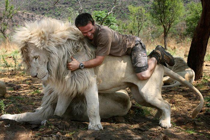 Кевин Ричардсон верхом на льве. Фото