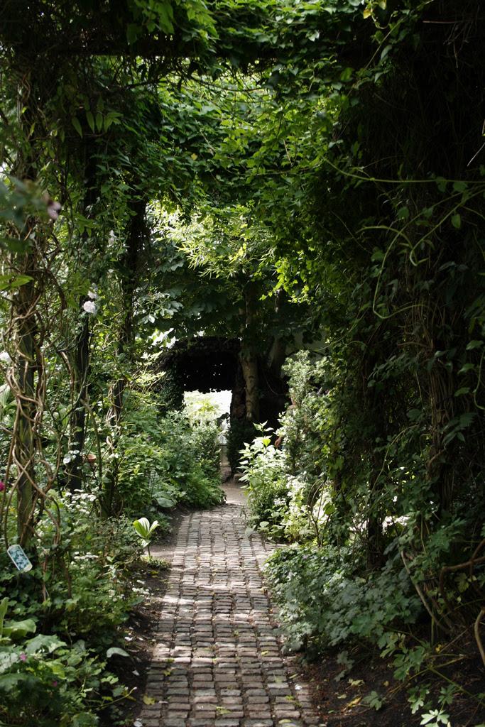 Haven i Hune