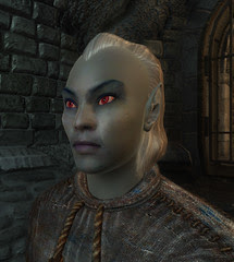 male Dark Elf 00 default
