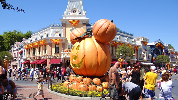 Disneyland Resort, Disneyland, Main Street U.S.A., Pumpkins, Halloween Time