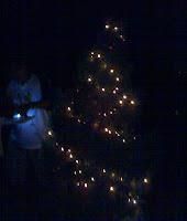 Lighted Tree