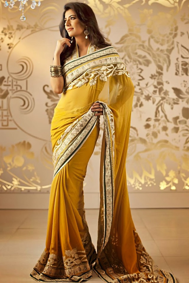 Bridal-Wedding-Formal-Casual-Party-Wear-Sarees-Dress-New-Fashion-Sari-for-Brides-by-Designer-Satya-Paul-11