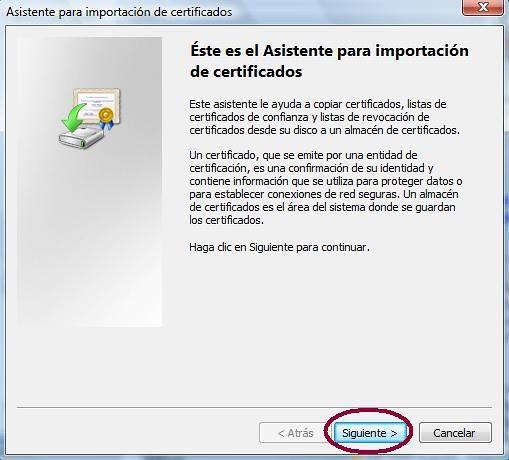 Inicio asistente importación IE