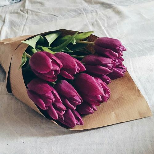 10 Flores Ademas De Las Rosas Que Las Mujeres Queremos Recibir