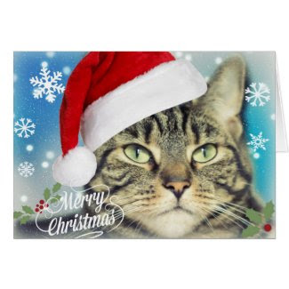 Tabby Cat in Santa Hat Christmas Greeting Card