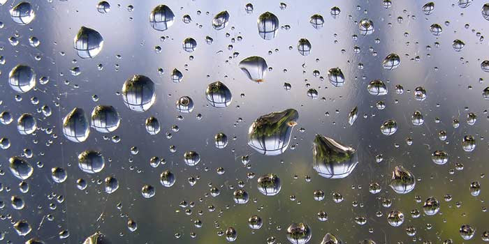 A Rainy Sunday Afternoon And The Power Of Synchronicity The Edge