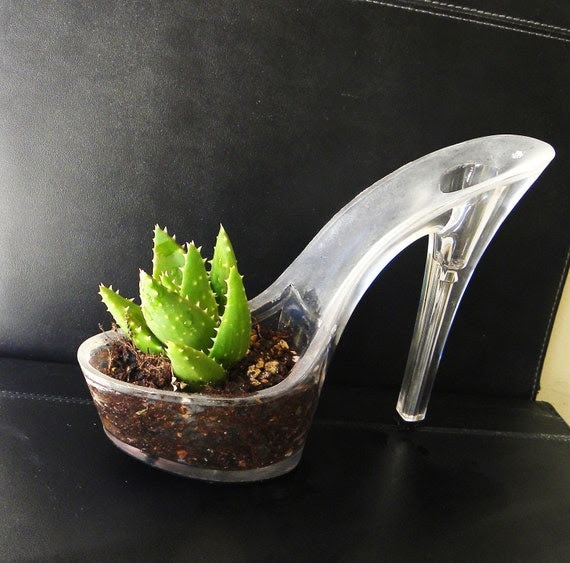 Bites Back. stiletto succulent  planter reclaimed high heel. eco friendly gift. feminist. indoor garden