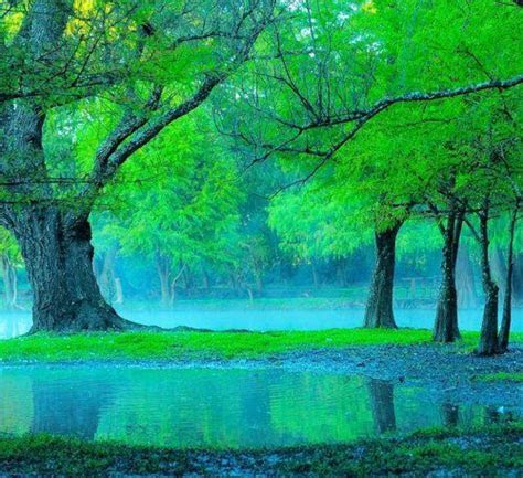 110 best Blue & Green My favorite Things images on