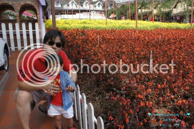 photo 11_zps7d977371.jpg
