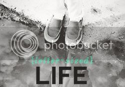 photo lsl-life.jpg