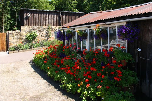 Gardener's shed at Chatsworth