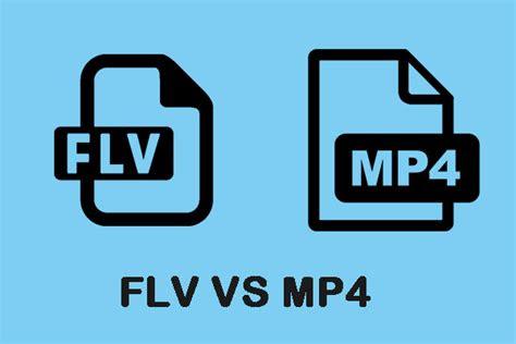 flv  mp        convert