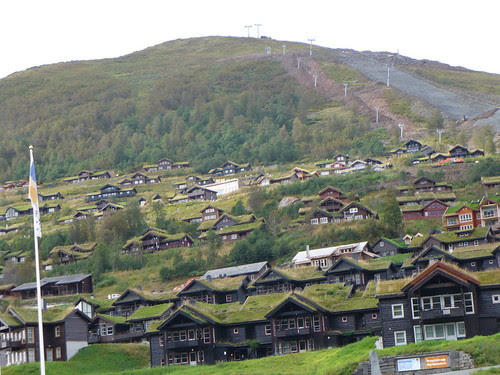 Green Roof Ski Resort