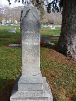 Mary Ann <i>Payne</i> Harris