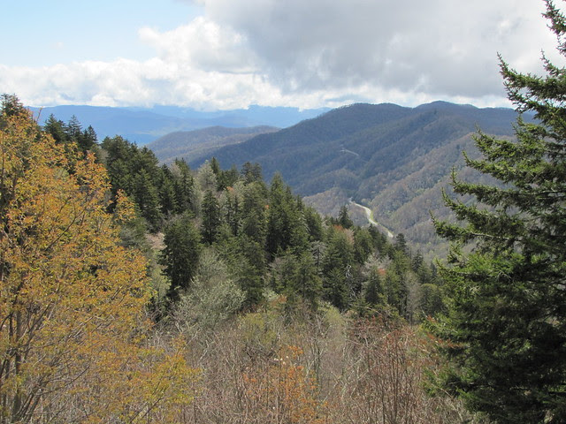 IMG_4830_Newfound_Gap